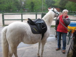 Thanet Disabled Riding Centre